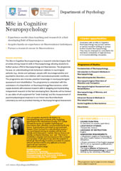 MSc in Cognitive Neuropsychology